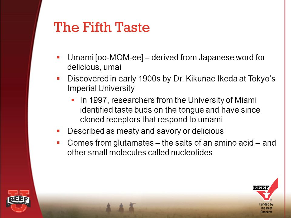  Umami taste is produced by naturally occurring compounds  Glutamic acid, an amino acid  Salts of glutamic acid (glutamates)  Nucleotides  Beef contains all three 3 Natural Sources of Umami
