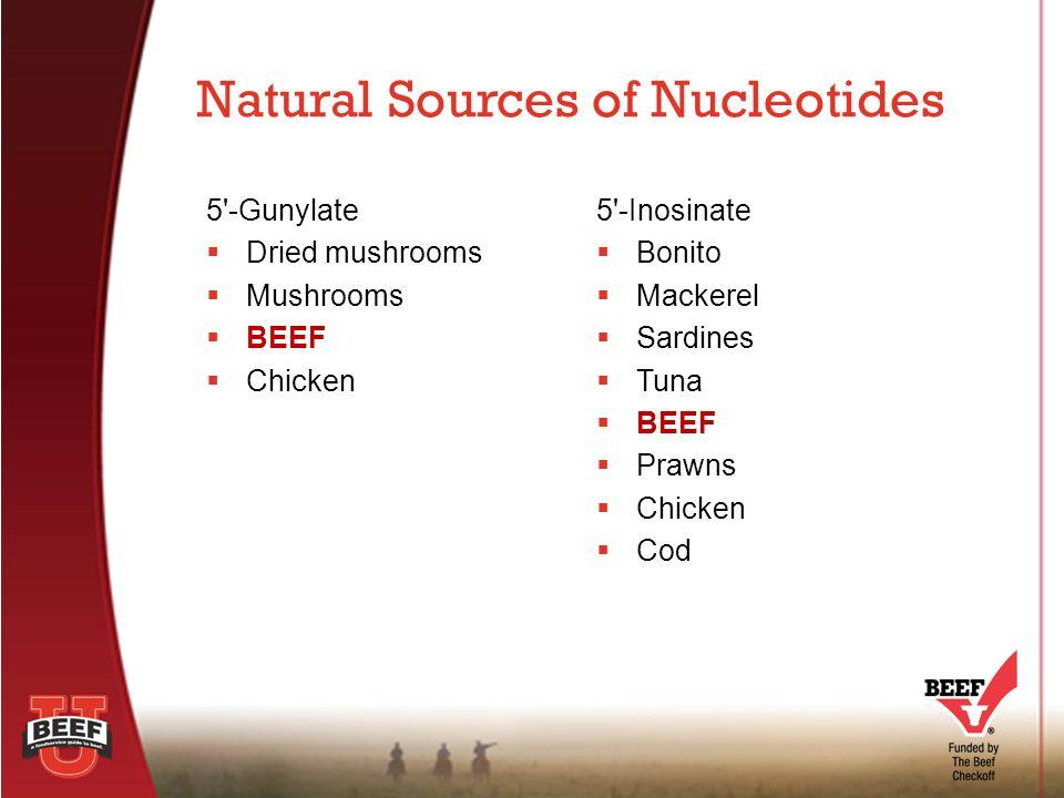 5 -Gunylate  Dried mushrooms  Mushrooms  BEEF  Chicken Natural Sources of Nucleotides 5 -Inosinate  Bonito  Mackerel  Sardines  Tuna  BEEF  Prawns  Chicken  Cod