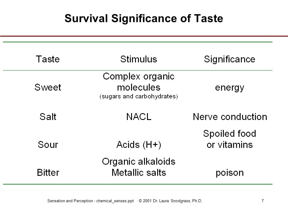 Sensation and Perception - chemical_senses.ppt © 2001 Dr. Laura Snodgrass, Ph.D.7 Survival Significance of Taste