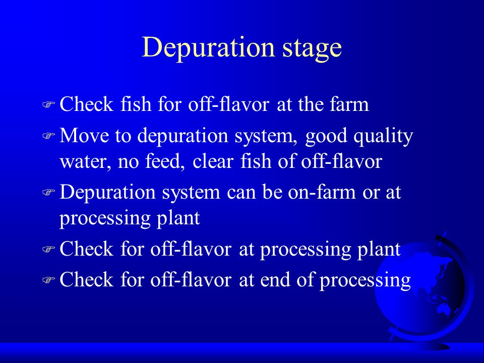 Depuration stage F Check fish for off-flavor at the farm F Move to depuration system, good quality water, no feed, clear fish of off-flavor F Depurati