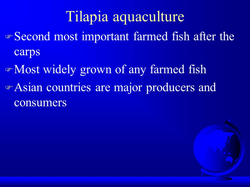 Global Aquaculture Tilapia Sales F For year 2000 =US $ 1,744,045000 (FAO FishStat 2007) F 2005 sales = $ 2,457,312,000 (FAO FishStat 2007) F 2010 sales >$ 5,000,000,000