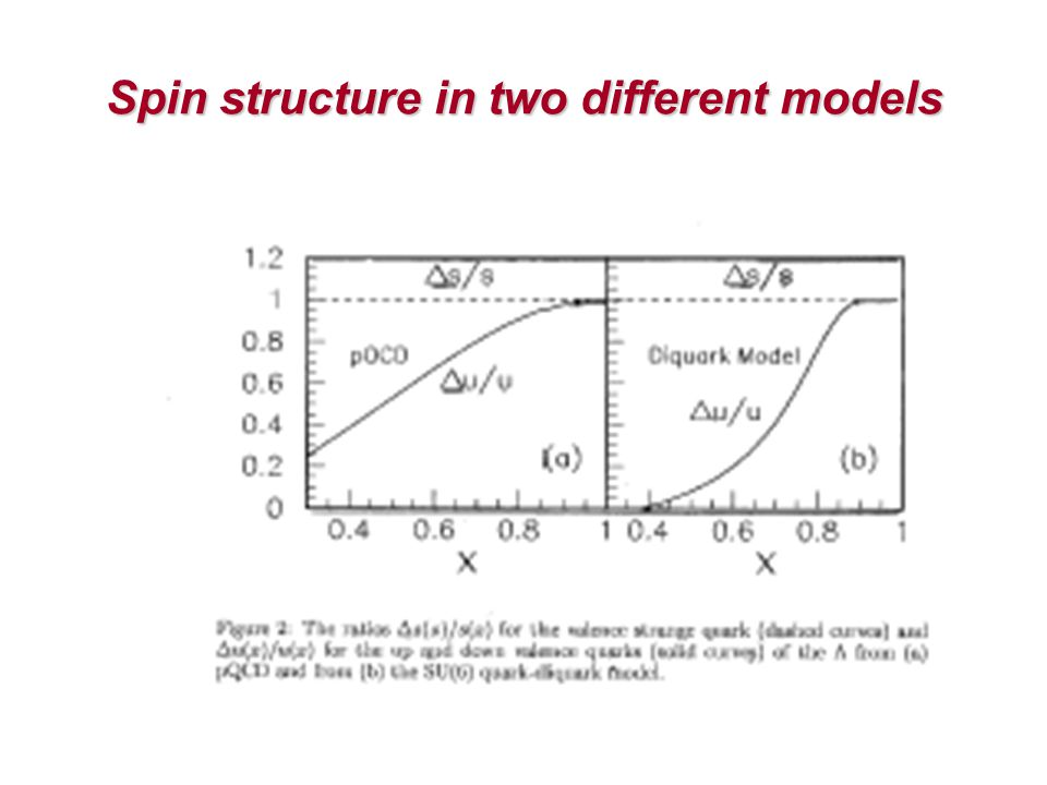 Spin structure in two different models