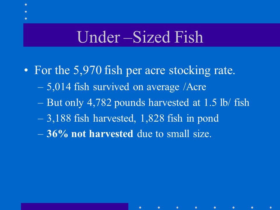 Under –Sized Fish For the 5,970 fish per acre stocking rate.