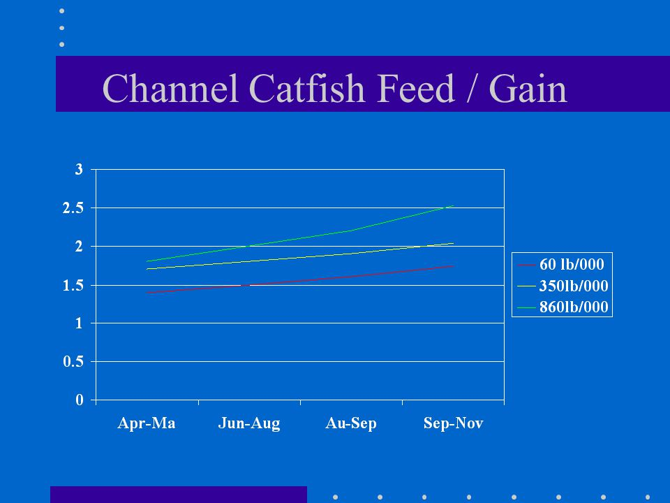 Channel Catfish Feed / Gain