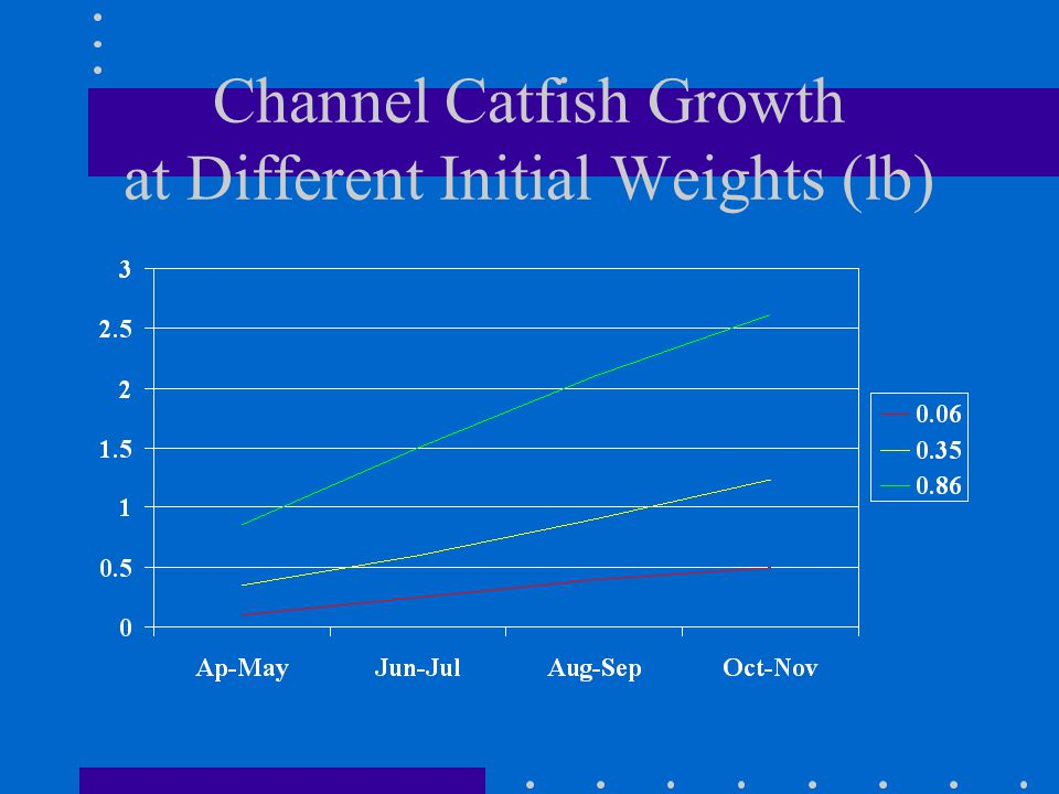 Channel Catfish Growth at Different Initial Weights (lb)