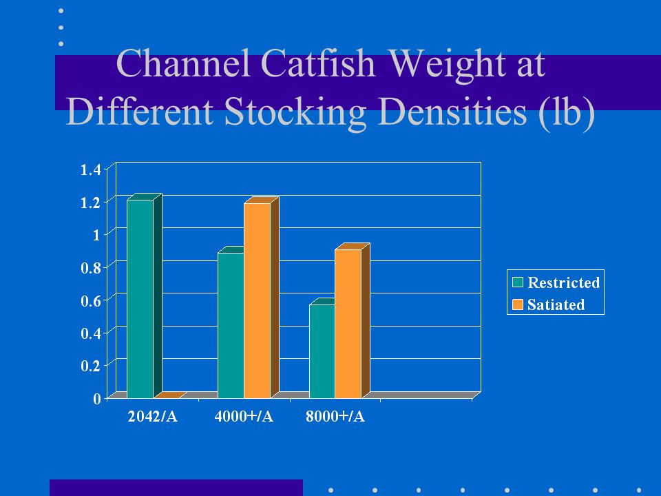 Channel Catfish Weight at Different Stocking Densities (lb)