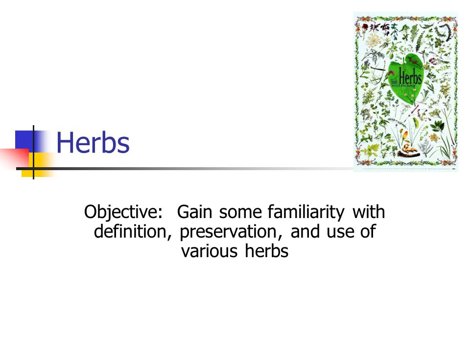 Herbs Objective: Gain some familiarity with definition, preservation, and use of various herbs