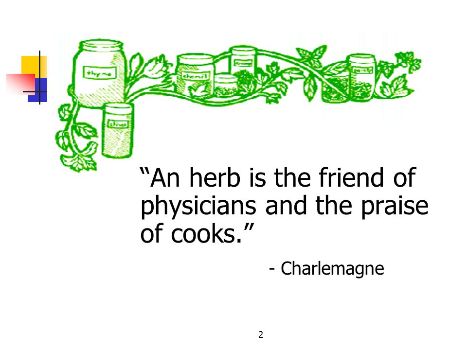 2 An herb is the friend of physicians and the praise of cooks. - Charlemagne