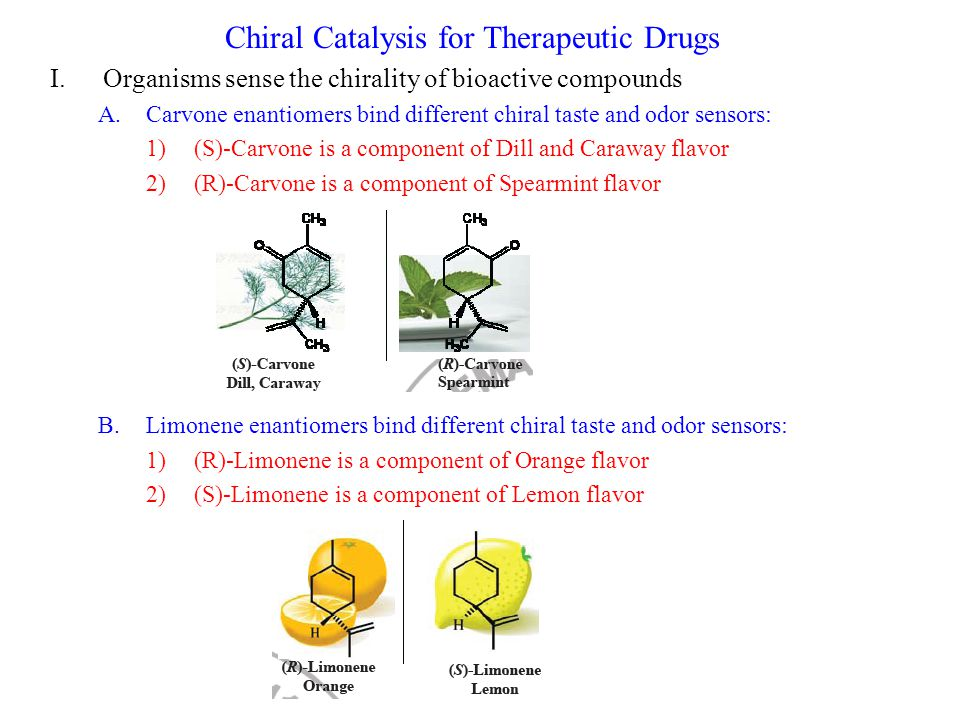 Chiral Catalysis for Therapeutic Drugs I.Organisms sense the chirality of bioactive compounds A.Carvone enantiomers bind different chiral taste and odor sensors: 1)(S)-Carvone is a component of Dill and Caraway flavor 2)(R)-Carvone is a component of Spearmint flavor B.Limonene enantiomers bind different chiral taste and odor sensors: 1)(R)-Limonene is a component of Orange flavor 2)(S)-Limonene is a component of Lemon flavor