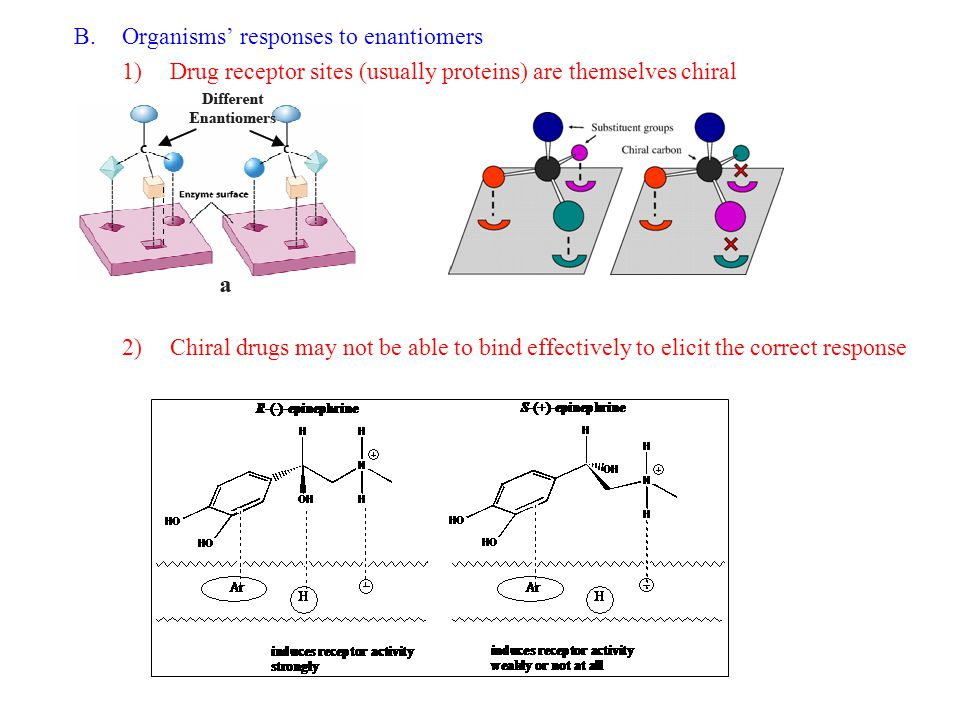 B.Organisms' responses to enantiomers 1)Drug receptor sites (usually proteins) are themselves chiral 2)Chiral drugs may not be able to bind effectively to elicit the correct response