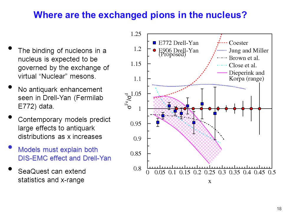 Where are the exchanged pions in the nucleus.