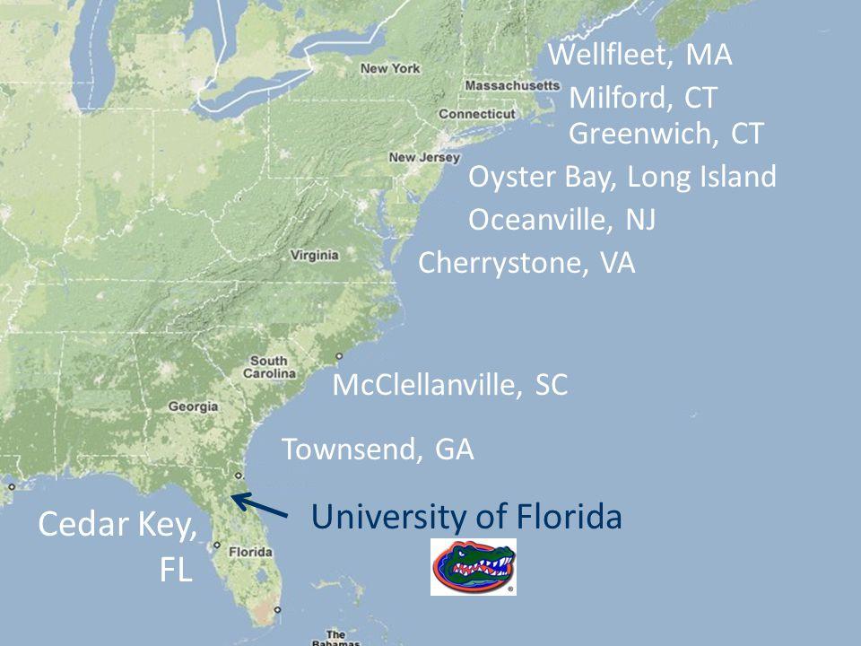 Townsend, GA McClellanville, SC Cherrystone, VA Oceanville, NJ Oyster Bay, Long Island Greenwich, CT Milford, CT Wellfleet, MA Cedar Key, FL University of Florida