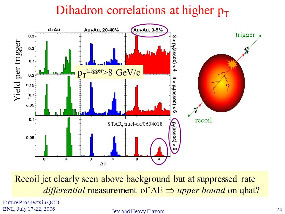 Future Prospects in QCD BNL, July 17-22, 2006 24 Jets and Heavy Flavors Dihadron correlations at higher p T Recoil jet clearly seen above background but at suppressed rate differential measurement of`  E  upper bound on qhat.
