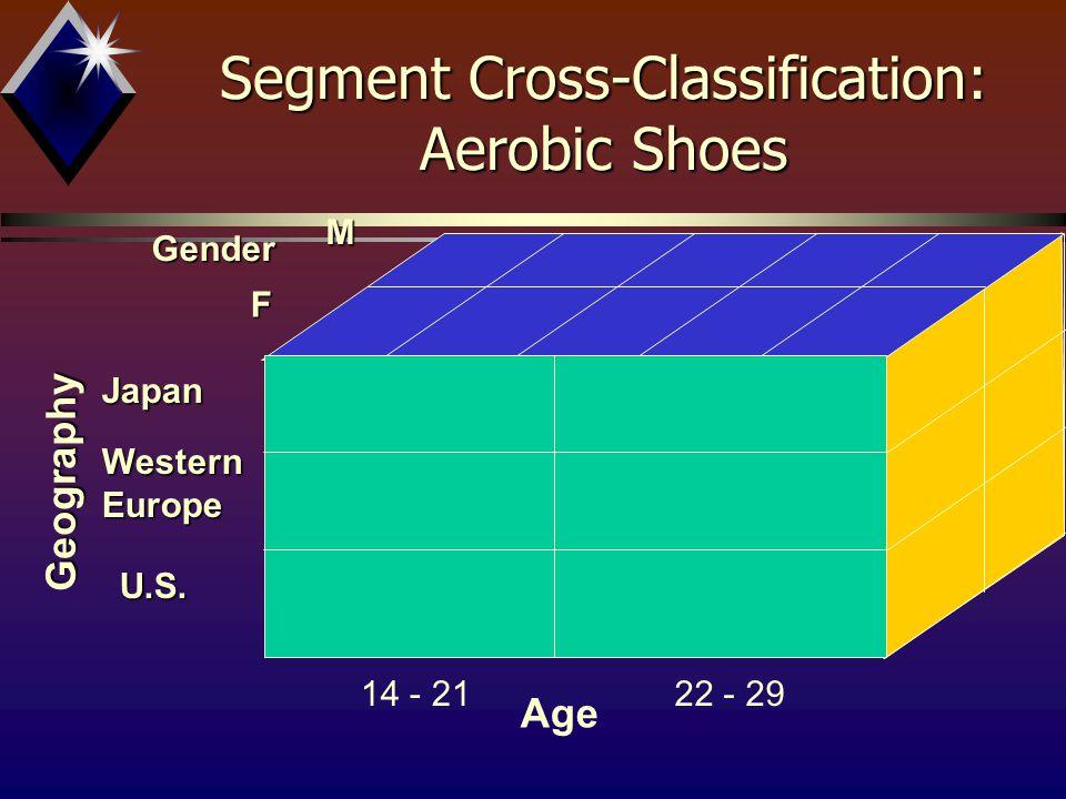 Gender FM Age 14 - 2122 - 29 Geography Japan Western Europe U.S. Segment Cross-Classification: Aerobic Shoes
