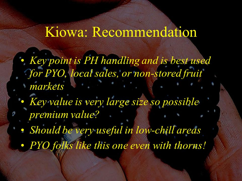 Kiowa: Recommendation Key point is PH handling and is best used for PYO, local sales, or non-stored fruit markets Key value is very large size so possible premium value.