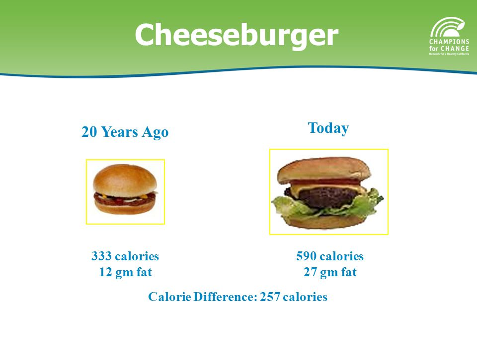 Calorie Difference: 257 calories 590 calories 27 gm fat 20 Years Ago Today 333 calories 12 gm fat Cheeseburger