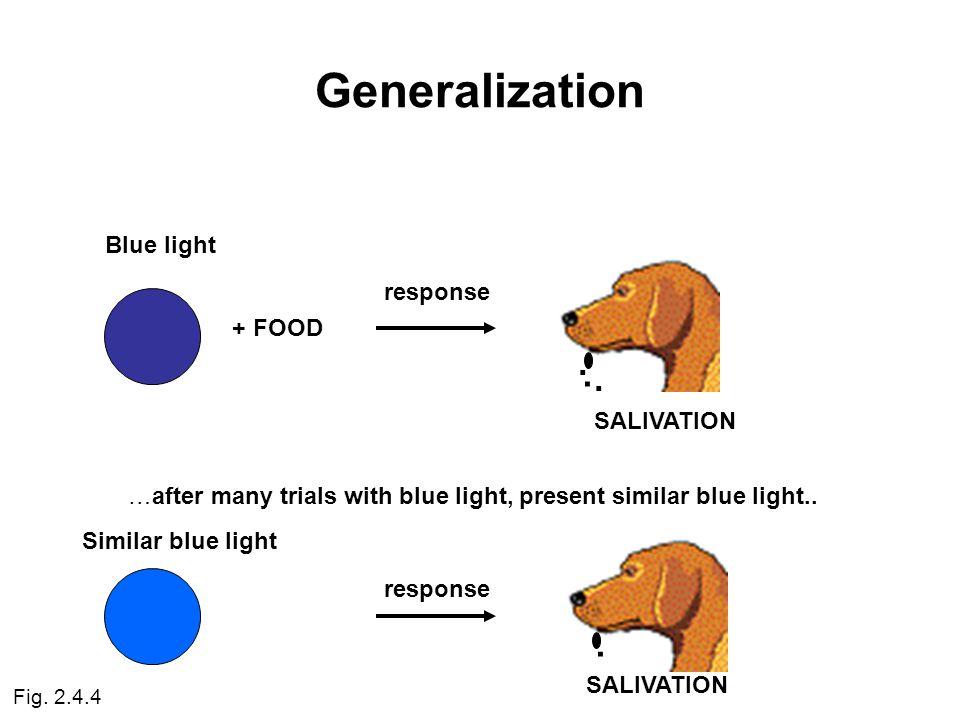 Generalization Blue light + FOOD response...