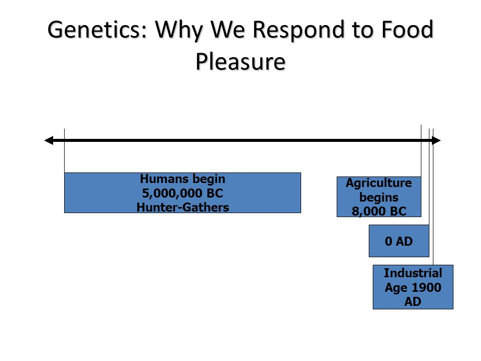Genetics: Why We Respond to Food Pleasure Humans begin 5,000,000 BC Hunter-Gathers Agriculture begins 8,000 BC 0 AD Industrial Age 1900 AD