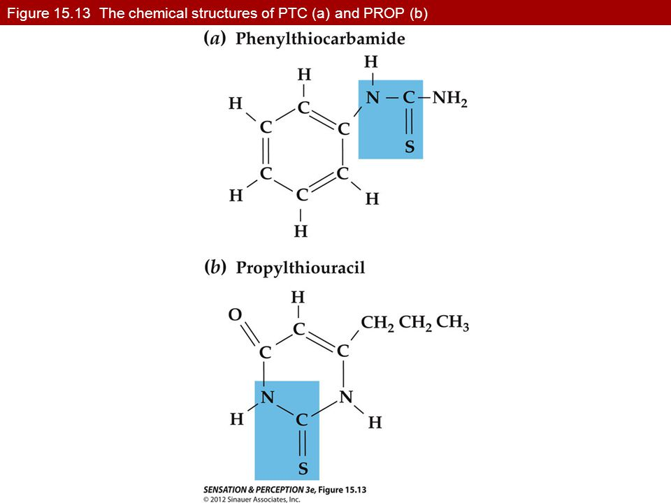 Figure 15.13 The chemical structures of PTC (a) and PROP (b)