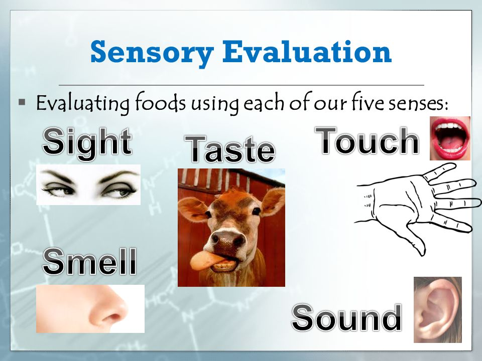Sensory Evaluation  Evaluating foods using each of our five senses: