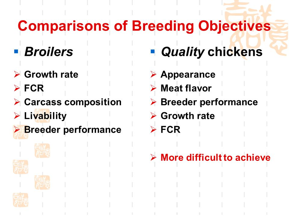 Comparisons of Breeding Objectives  Quality chickens  Appearance  Meat flavor  Breeder performance  Growth rate  FCR  More difficult to achieve  Broilers  Growth rate  FCR  Carcass composition  Livability  Breeder performance