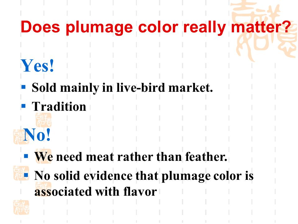Does plumage color really matter. Yes.  Sold mainly in live-bird market.