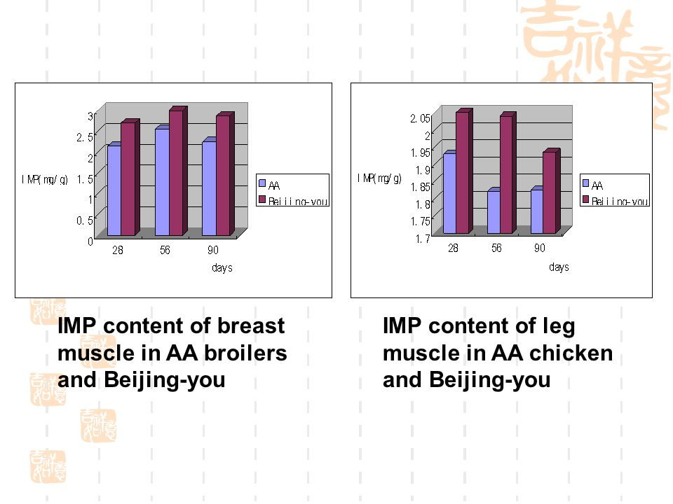 IMP content of breast muscle in AA broilers and Beijing-you IMP content of leg muscle in AA chicken and Beijing-you