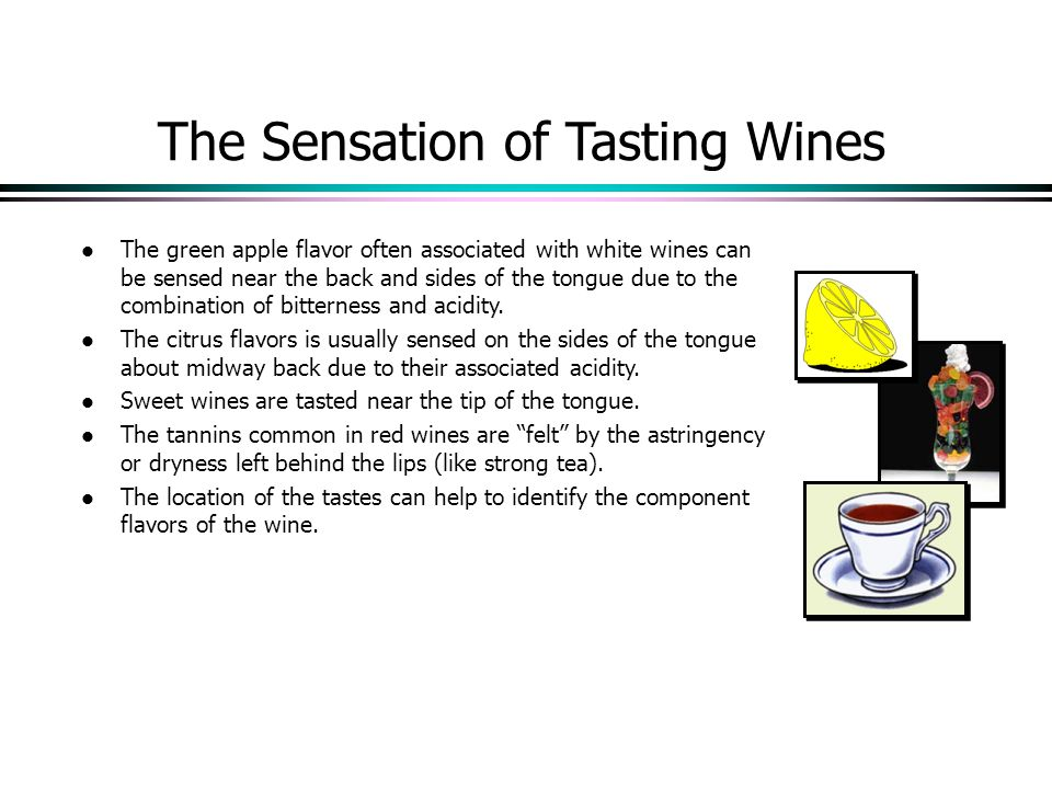 The Sensation of Tasting Wines l The green apple flavor often associated with white wines can be sensed near the back and sides of the tongue due to the combination of bitterness and acidity.