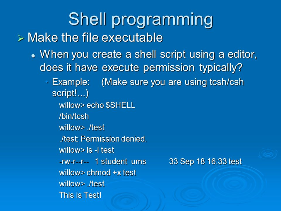 Shell programming  Make the file executable When you create a shell script using a editor, does it have execute permission typically.