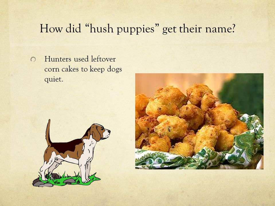 "How did ""hush puppies"" get their name? Hunters used leftover corn cakes to keep dogs quiet."