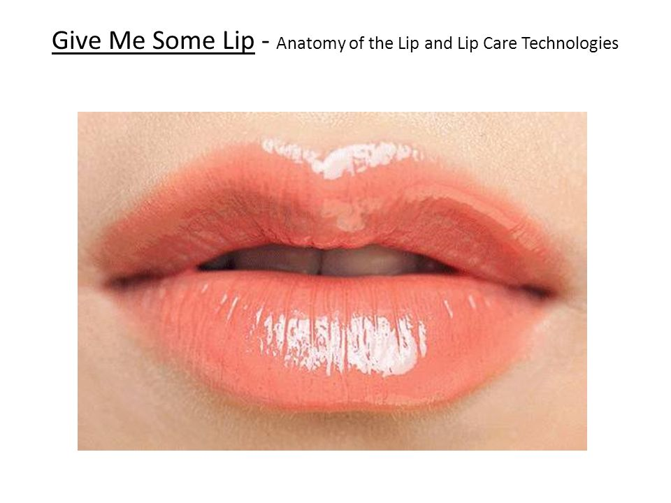 Give Me Some Lip - Anatomy of the Lip and Lip Care Technologies