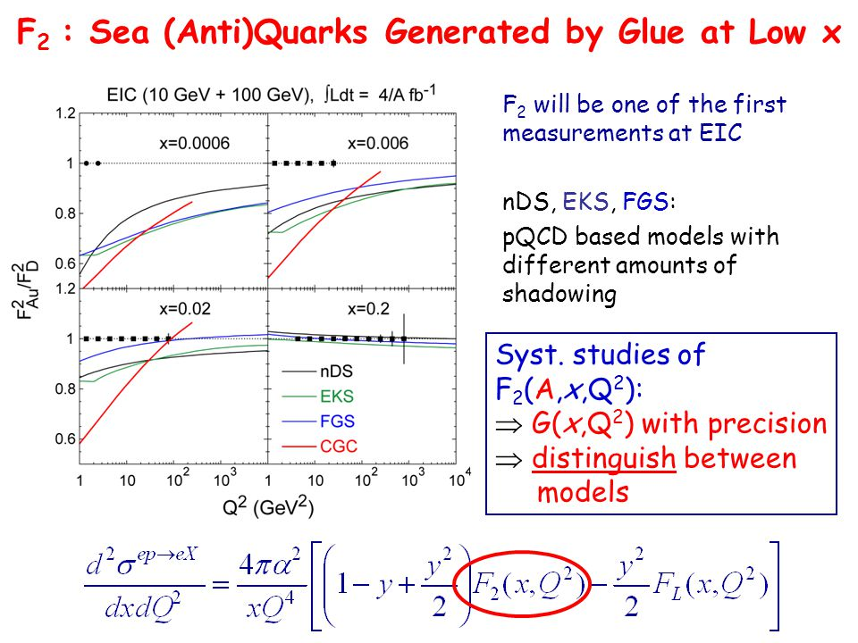 F 2 : Sea (Anti)Quarks Generated by Glue at Low x F 2 will be one of the first measurements at EIC nDS, EKS, FGS: pQCD based models with different amounts of shadowing Syst.