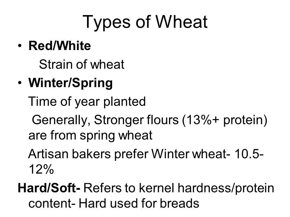Wheat flour Parts of wheat kernel Bran, Germ, Endosperm Flour Make up Moisture- 14% % protein- Gluten- 10.5-12 % (Preferred) Ash:.05 MINIMUM Extraction 100%= Whole wheat/ 1.5% Ash 77 % =.5 ash
