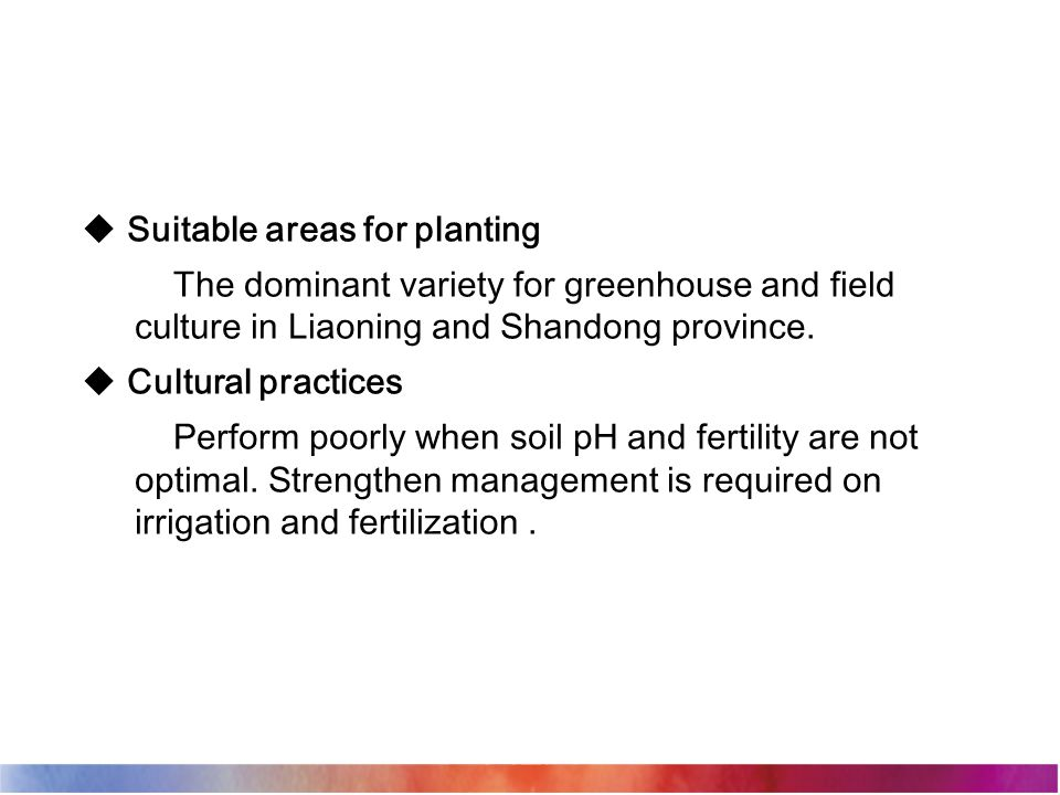  Suitable areas for planting The dominant variety for greenhouse and field culture in Liaoning and Shandong province.  Cultural practices Perform po