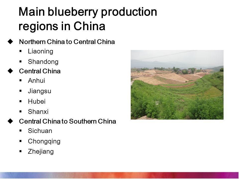  Northern China to Central China  Liaoning  Shandong  Central China  Anhui  Jiangsu  Hubei  Shanxi  Central China to Southern China  Sichuan  Chongqing  Zhejiang Main blueberry production regions in China
