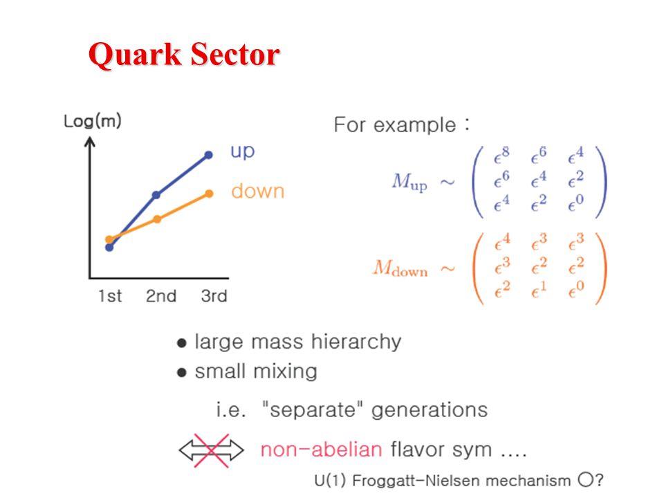 Quark Sector