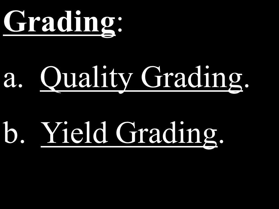 Grading: a. Quality Grading. b. Yield Grading.