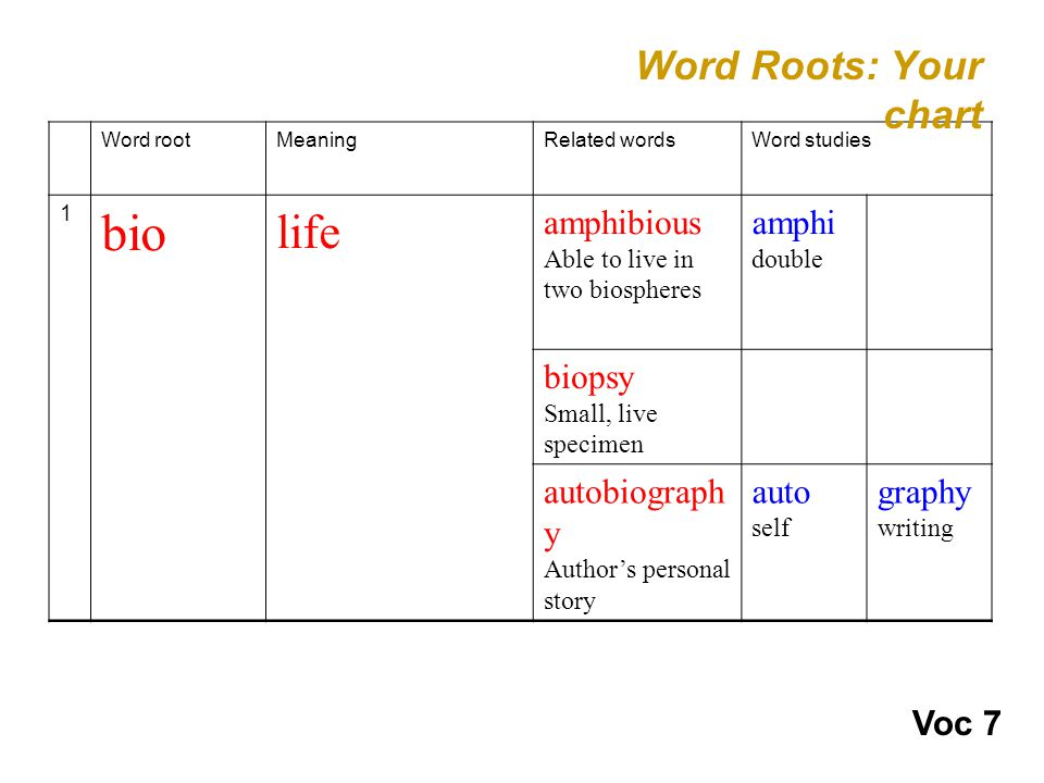 Word rootMeaningRelated wordsWord studies 1 bio life amphibious Able to live in two biospheres amphi double biopsy Small, live specimen autobiograph y Author's personal story auto self graphy writing Word Roots: Your chart Voc 7