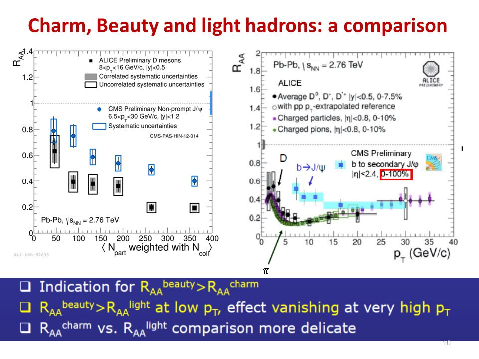 Charm, Beauty and light hadrons: a comparison 10 