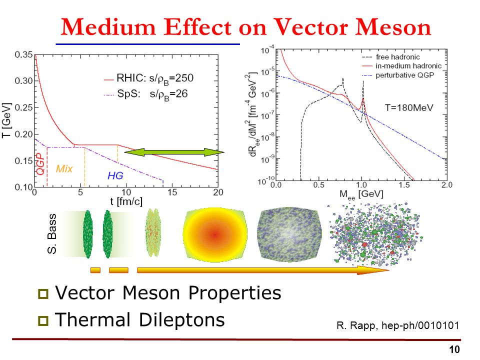 10 Medium Effect on Vector Meson  Vector Meson Properties  Thermal Dileptons R.