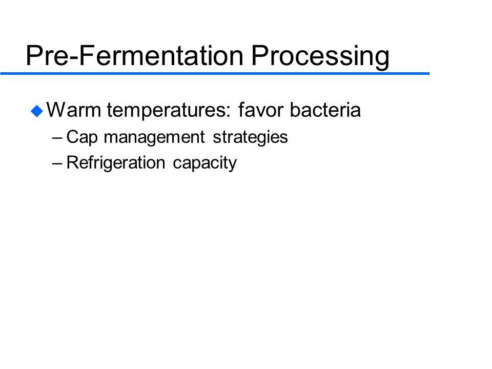 Pre-Fermentation Processing  Warm temperatures: favor bacteria –Cap management strategies –Refrigeration capacity