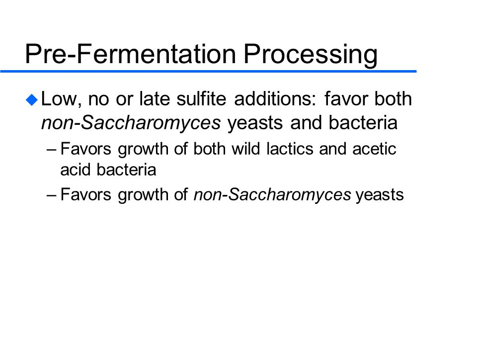 Pre-Fermentation Processing  Low, no or late sulfite additions: favor both non-Saccharomyces yeasts and bacteria –Favors growth of both wild lactics and acetic acid bacteria –Favors growth of non-Saccharomyces yeasts