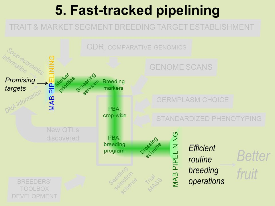 What is Fast-Tracked Pipelining.