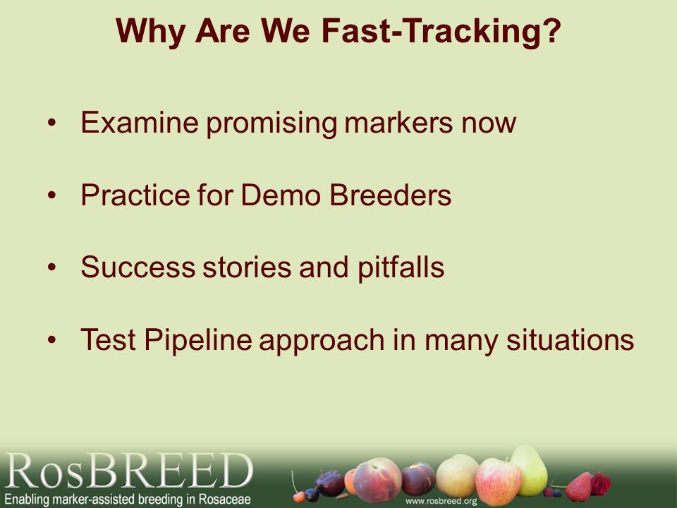 Why Are We Fast-Tracking.