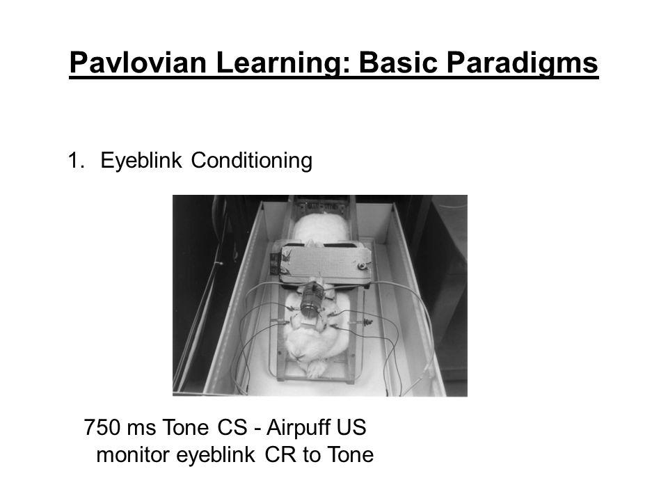 Pavlovian Learning: Basic Paradigms 1.Eyeblink Conditioning 750 ms Tone CS - Airpuff US monitor eyeblink CR to Tone