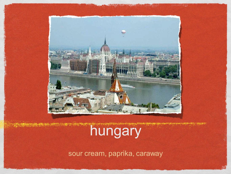 hungary sour cream, paprika, caraway