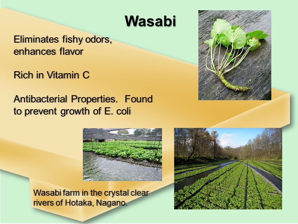 Wasabi Eliminates fishy odors, enhances flavor Rich in Vitamin CRich in Vitamin C Antibacterial Properties.