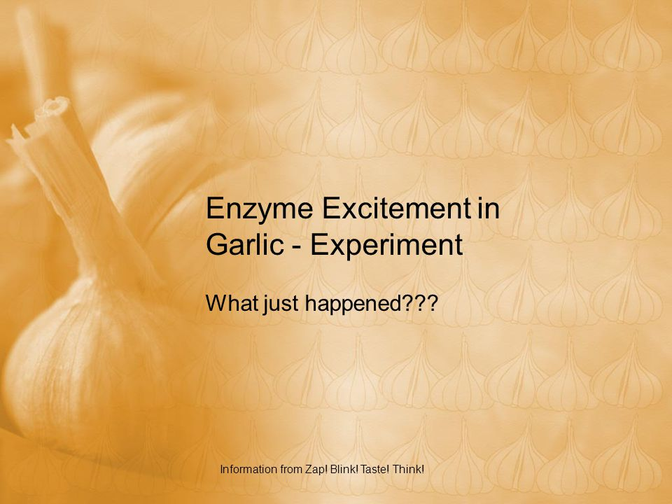 Enzyme Excitement in Garlic - Experiment What just happened??? Information from Zap! Blink! Taste! Think!