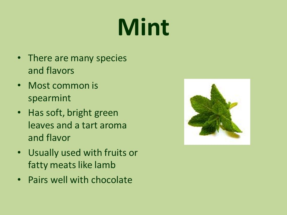 Mint There are many species and flavors Most common is spearmint Has soft, bright green leaves and a tart aroma and flavor Usually used with fruits or