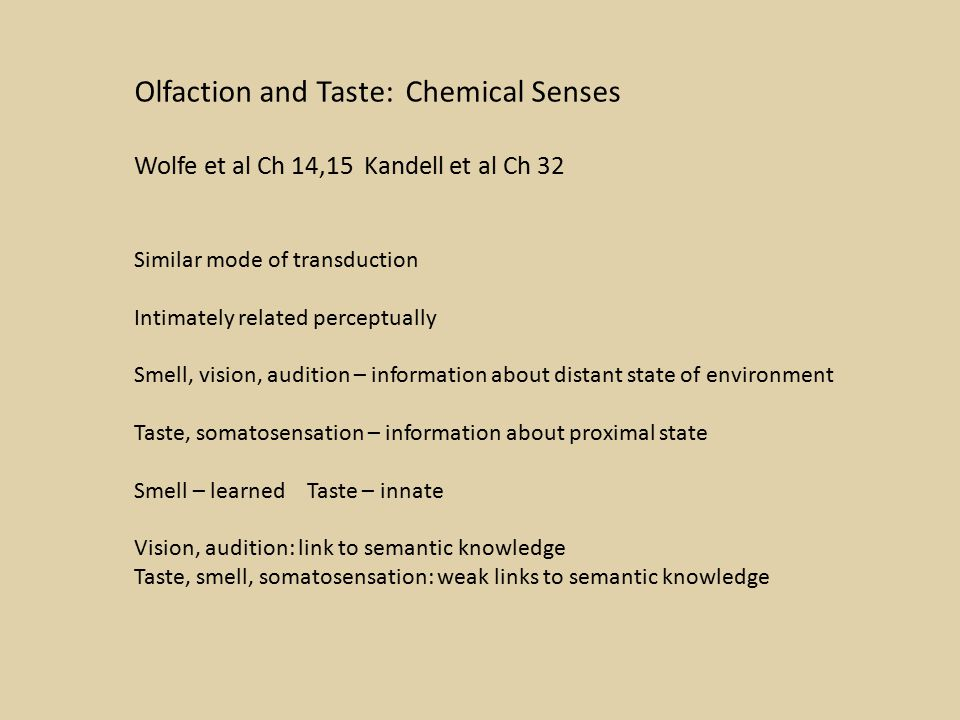 Olfaction and Taste: Chemical Senses Wolfe et al Ch 14,15 Kandell et al Ch 32 Similar mode of transduction Intimately related perceptually Smell, vision, audition – information about distant state of environment Taste, somatosensation – information about proximal state Smell – learned Taste – innate Vision, audition: link to semantic knowledge Taste, smell, somatosensation: weak links to semantic knowledge